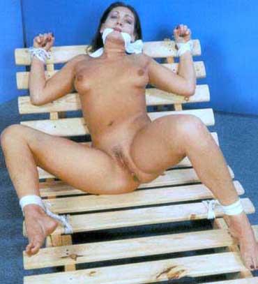 Bild klicken für mehr Sm Slave